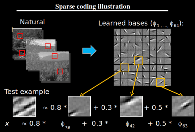 figure-4-sparse-coding-illustration